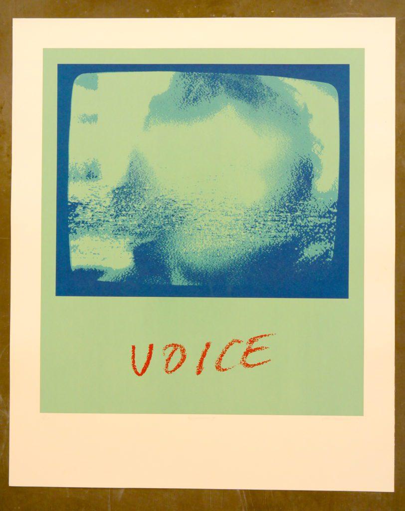voice-3